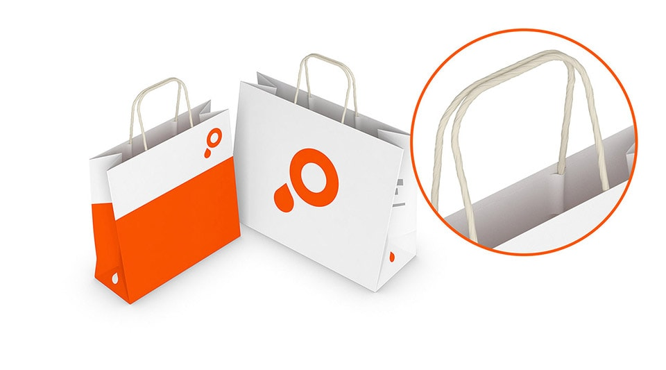 Paper Carrier Bags with Twisted Paper Handles