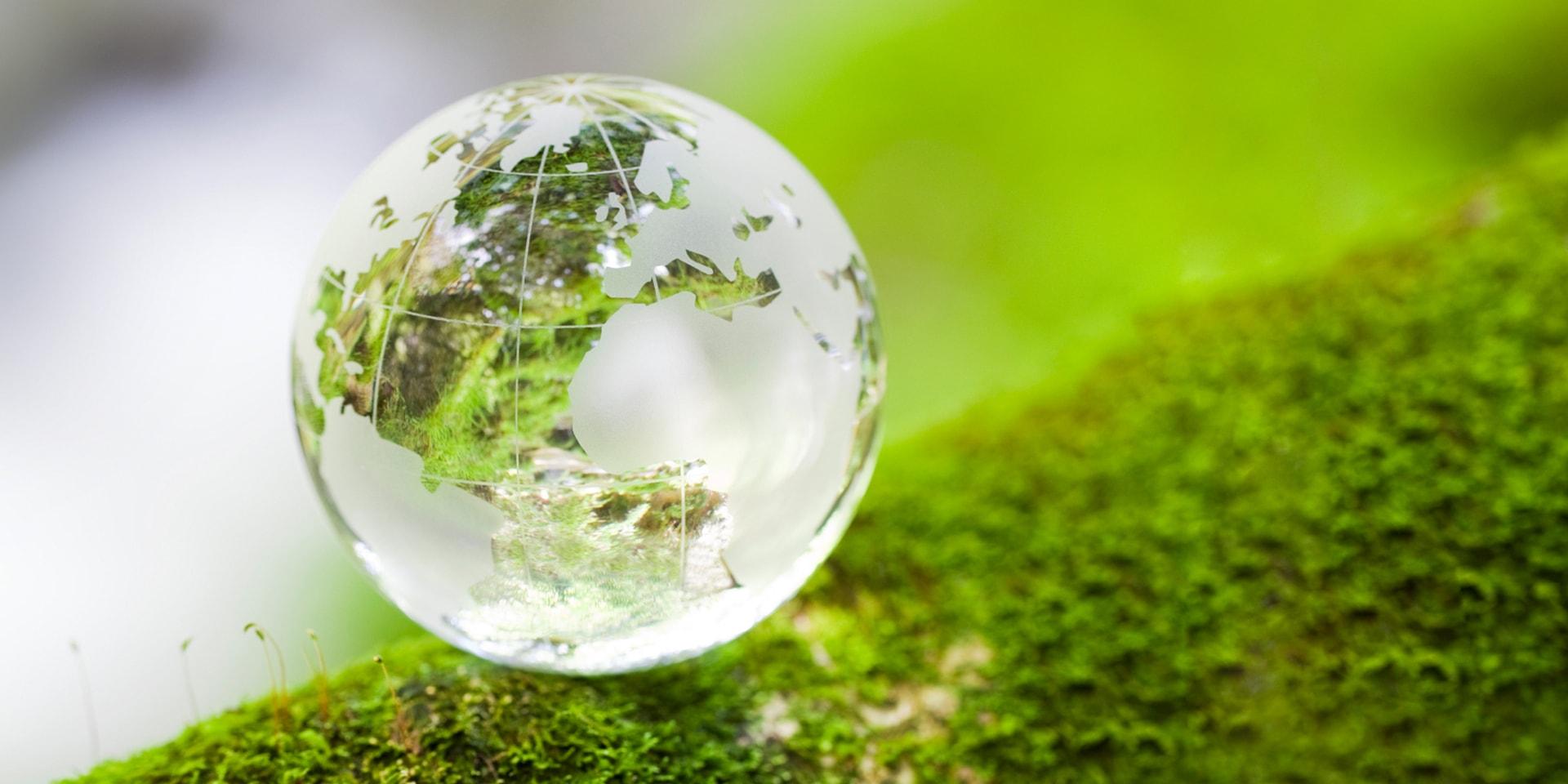 protecting the environment writefixcom how we protect the environment essays studymode