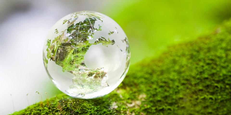 Tutela ambientale e sostenibilità
